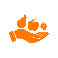 https://ba16.banquealimentaire.org/themes/custom/customer/images/presentation_1.png
